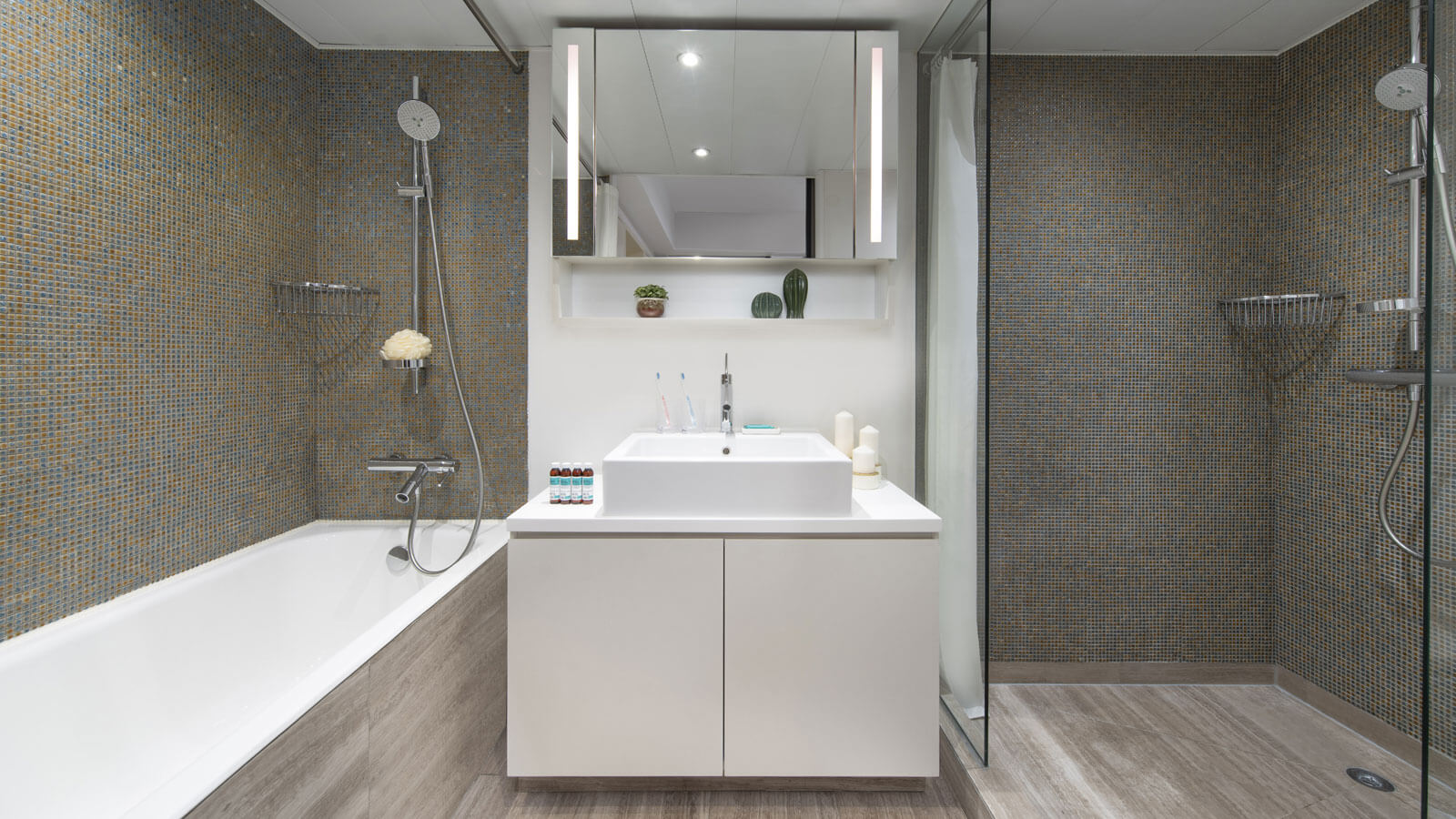 Luxury One Bedroom - Bathroom